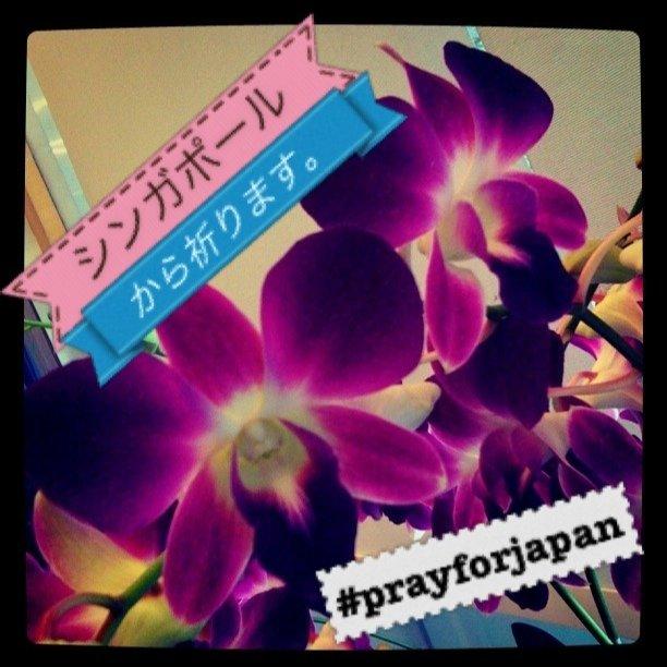 シンガポールから届いたpray for japan