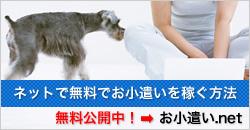 お小遣い.net