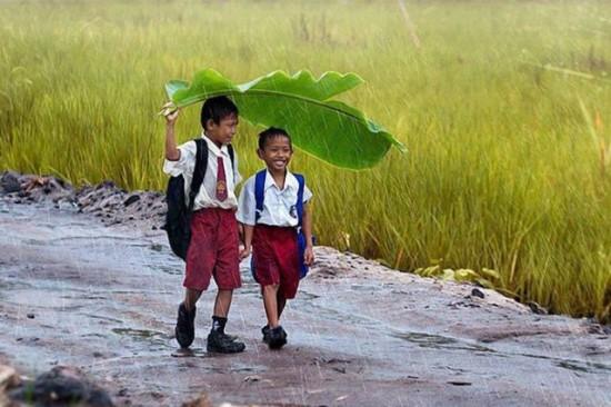 雨の日に大きな葉っぱを傘代わりにさす子供