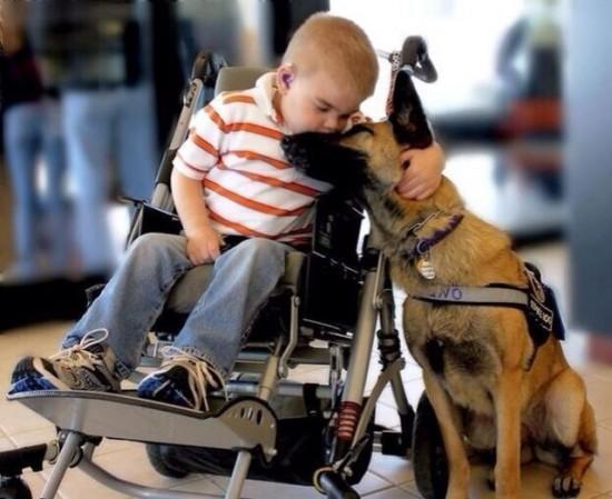 犬にキスをする足の不自由な少年