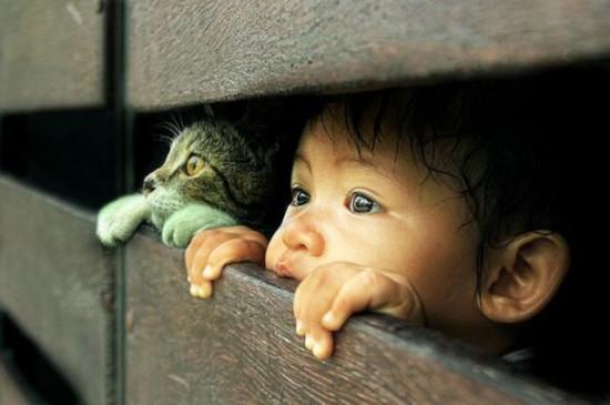 隙間から外を猫と眺める少年