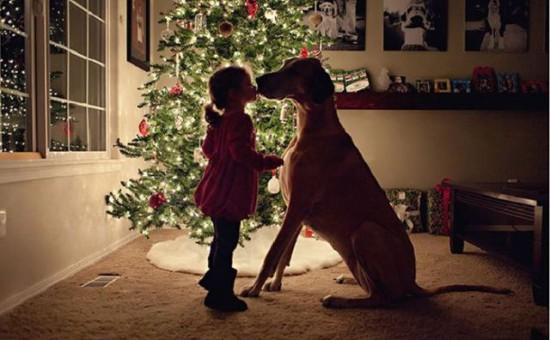 自分より大きな犬にキスをする少女